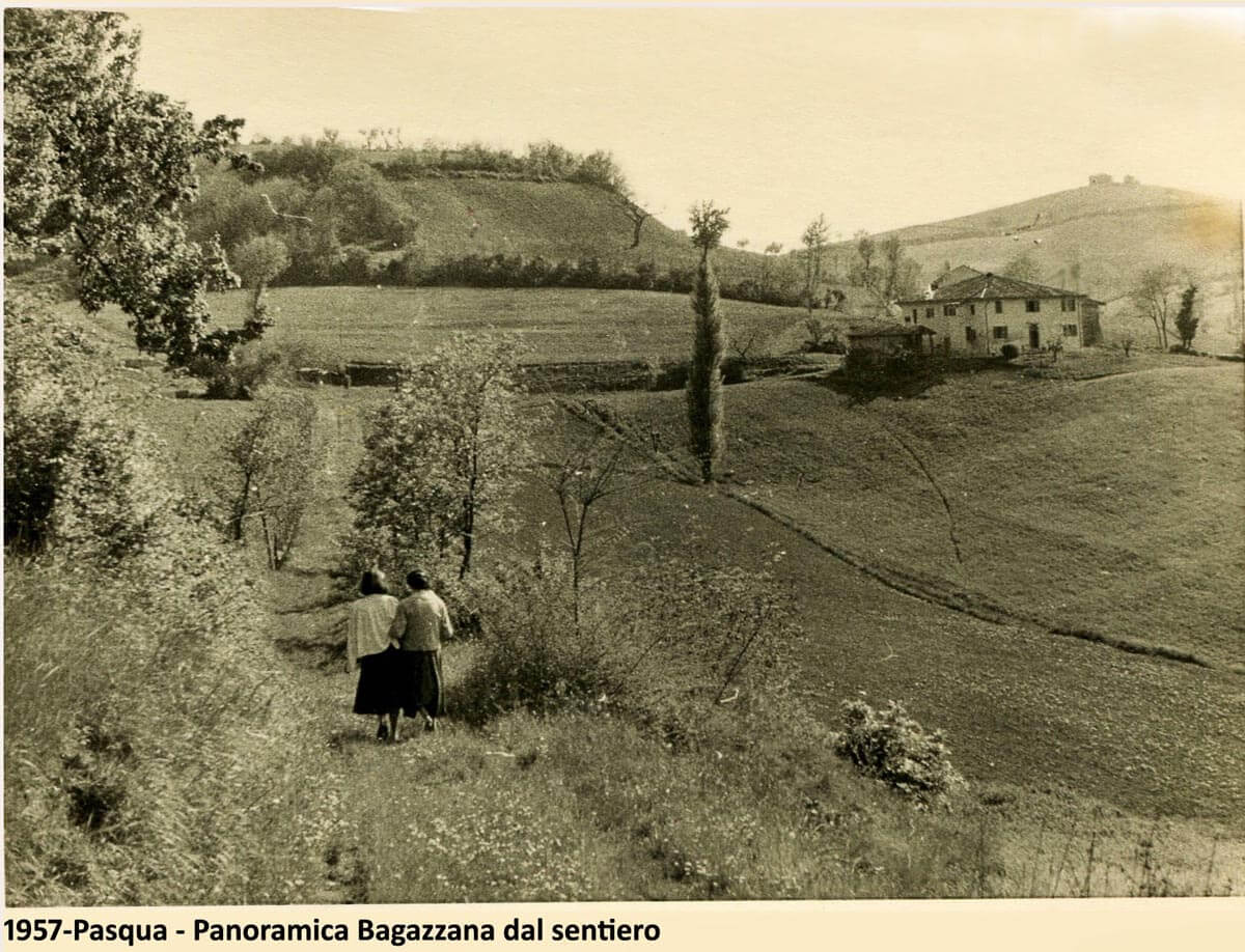 Veduta dell'antico Vigneto Bagazzana in provincia di Bologna