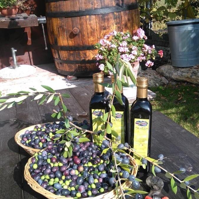 Produzione in proprio olio nell'azienda agricola e agriturismo Borgo delle Vigne in provincia di Bologna