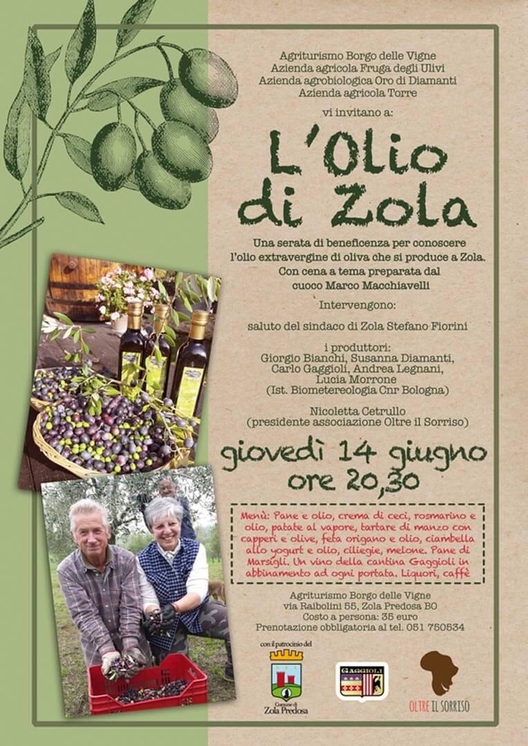 Produzione olio azienda agricola e vitivinicola Gaggioli
