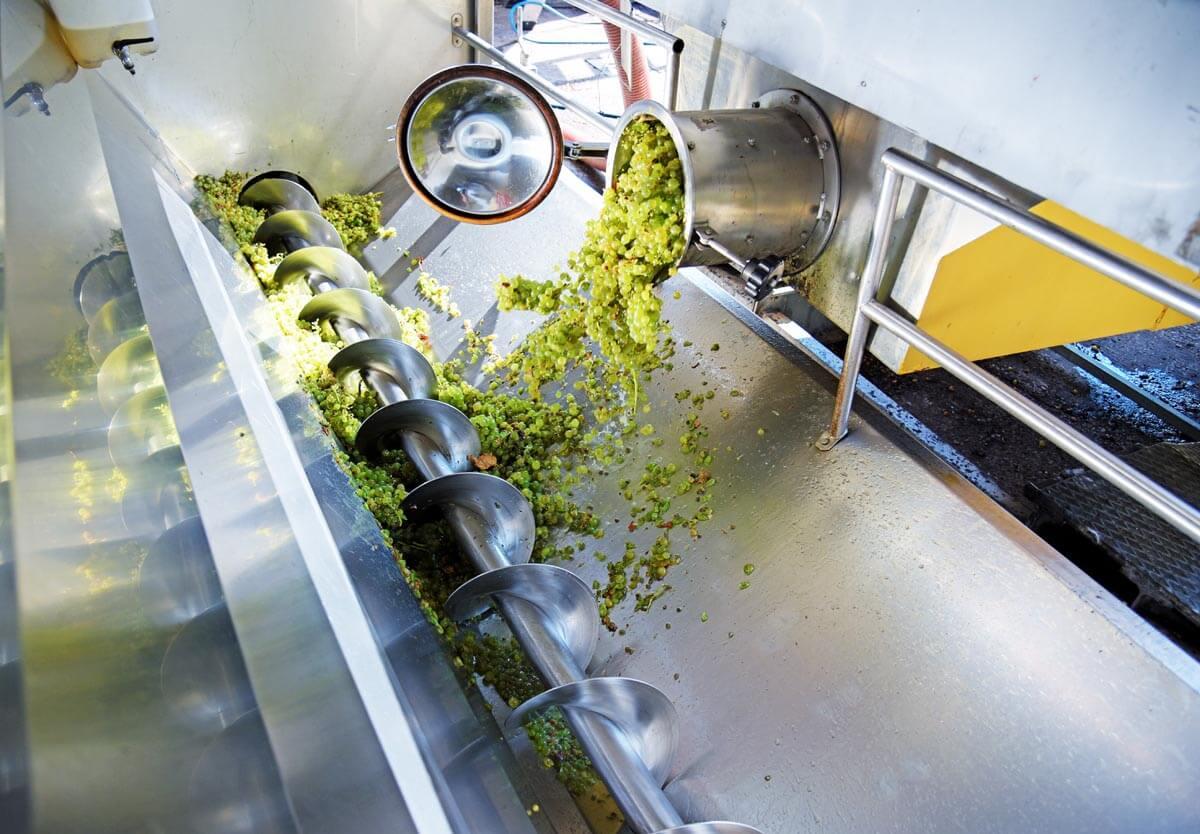 Lavorazione delle uve con apparecchiature moderne nella cantina Gaggioli a Zola Predosa